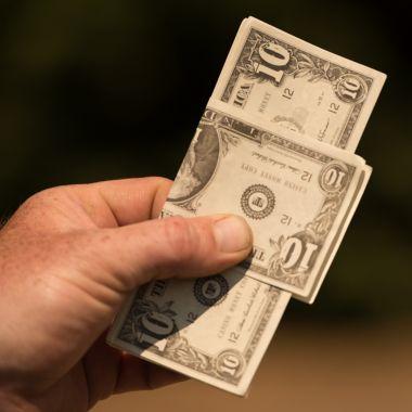 Dollar Hunt Image
