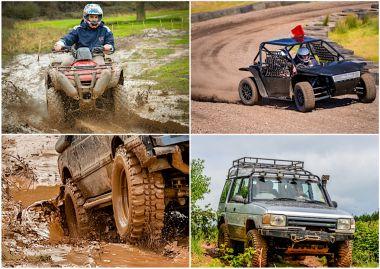 Speed & Safari Activity Picture